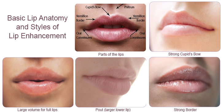 Lip Injections Product Types Amp Techniques 111 Harley St